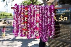 Leis λουλουδιών στο Δρ Sun Yat-sen Statue Στοκ φωτογραφία με δικαίωμα ελεύθερης χρήσης