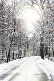 Leiser snow-covered städtischer Park im Winter. Stockfoto