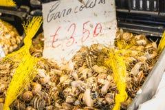 Leiste der kleinen portugiesischen Schnecke, die auf einem Markt lebt lizenzfreie stockbilder