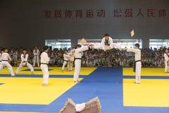 Leistung-Öffnungszeremonie--Der freundliche Wettbewerb achte GoldenTeam-Schalen-Taekwondos Stockbilder