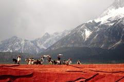 Leistung am Schneeberg stockfoto