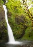 Leistungsfähige Wasserfälle Lizenzfreie Stockfotos