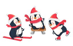 Leisure activities in winter. Winter sports illustration. Penguin Stock Image