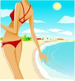Leisure in the sea. Vector pictire on tropical beach Royalty Free Stock Photography