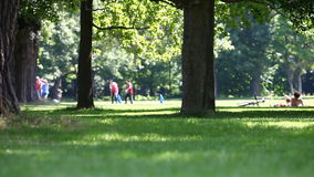 Leisure summer activity and dog in a park scene Stock Photos