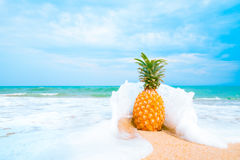 Leisure in summer and Summer vacation concept Royalty Free Stock Photo