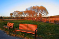 Leisure time. The benches in the evening lights, present a leisure moment Stock Photo