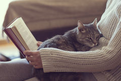 Leisure time with a cat Royalty Free Stock Image