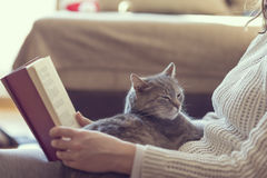 Leisure time with a cat Stock Images