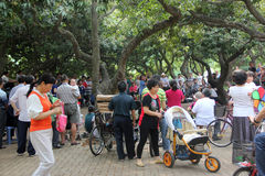 The leisure tourists in the SHENZHEN SIHAI park Royalty Free Stock Images