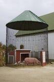 Leitão & círculo do porco da mamãe em torno de sua pena circular original imagem de stock