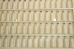 leite Imagens de Stock