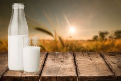 leite fotografia de stock