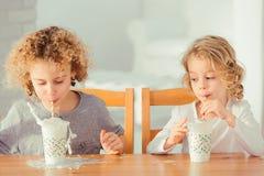 Leite bebendo dos irmãos Fotografia de Stock Royalty Free