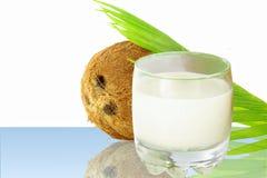 Leite de coco com coco Foto de Stock Royalty Free