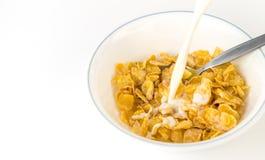 Leite de derramamento no cereal de café da manhã do floco de milho Imagem de Stock