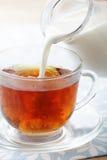 Leite de derramamento no copo com chá imagem de stock royalty free