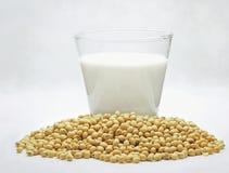 Leite de soja com feijões Imagens de Stock