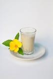 Leite de soja com manjericão do limão Foto de Stock