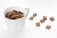 Leite e cereal Imagens de Stock