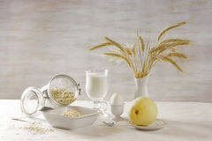 Leite e oatmeal fotos de stock royalty free
