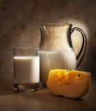 Leite e queijo Foto de Stock