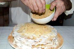 Leiter, der Kekskrumen auf Feiertagskuchen besprüht lizenzfreies stockfoto