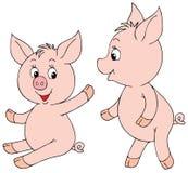 Leitão cor-de-rosa Imagens de Stock