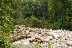 Leito fluvial com a ponte em montanhas do ruwenzori Imagens de Stock