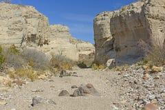 Leito fluvial seco em uma garganta do deserto fotos de stock royalty free