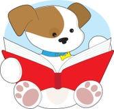Leitura bonito do filhote de cachorro Fotografia de Stock