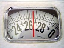 Leitura de escala Imagem de Stock
