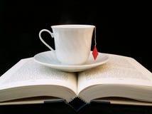Leitura de relaxamento Fotografia de Stock Royalty Free