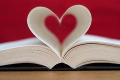 Leitura do amor Foto de Stock Royalty Free