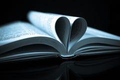 Leitura do amor Fotos de Stock
