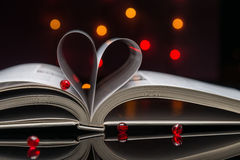 Leitura do amor Imagens de Stock Royalty Free