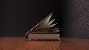Leitura do caderno do livro Imagens de Stock