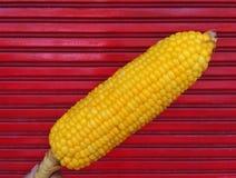 Lejąca się kukurudza Fotografia Royalty Free