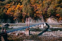 Leje się przy Baekdudaegan Moun, jesień las i zawieszenie most obraz stock