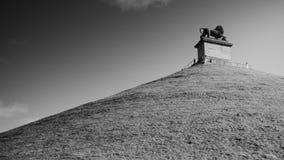 Lejon av waterloo fotografering för bildbyråer