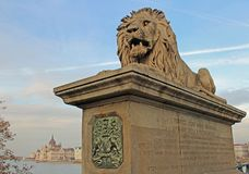 Lejon bevakar den Iconic Chain bron i Budapest, Ungern royaltyfri foto