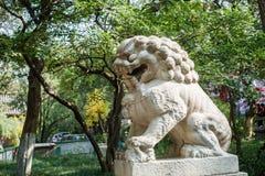 Lejon för Kina sten Royaltyfri Bild