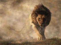 Lejon i dimma royaltyfri illustrationer