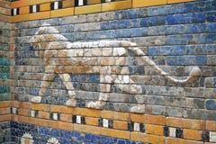Lejon - Ishtar port Royaltyfri Fotografi