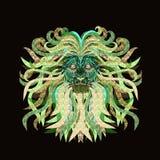 Lejon med en frodig man Royaltyfri Fotografi