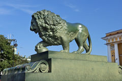 Lejon på den Amiralitetet invallningen i St Petersburg royaltyfri fotografi