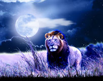 Lejon på natten stock illustrationer