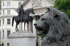 Lejon på Trafalgar Square London Royaltyfria Foton