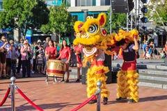 Lejondansare som får in i deras dräkt, kinesiskt nytt år royaltyfria bilder