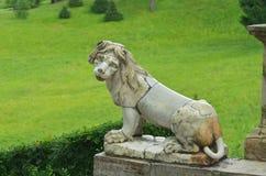 Lejonet sitter på trappan Royaltyfria Bilder